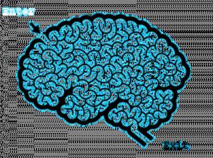 brain-maze3